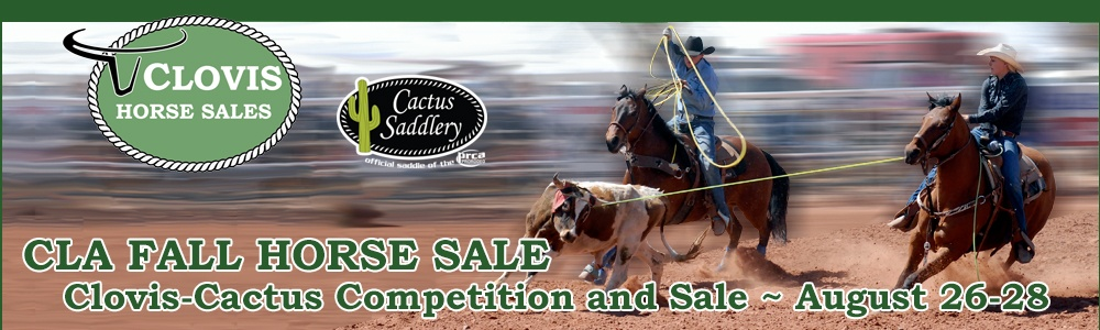 CLA Fall Horse Sale