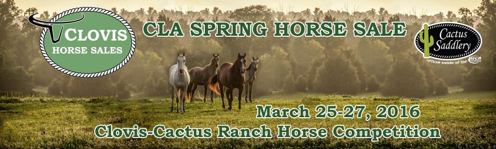 CLA Spring Horse Sale