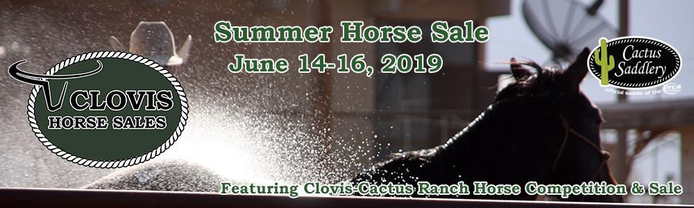 CLA Summer Horse Sale