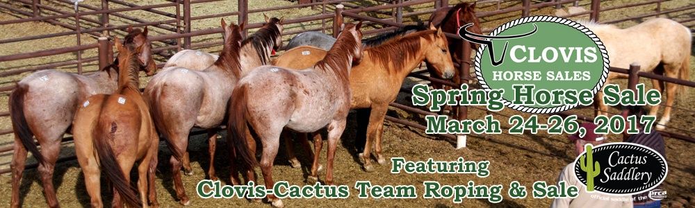 CLA Spring Horse Sale